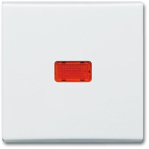 busch jaeger wippe cws kontroll wechsel 2107 32 fronten speichermodule ssds. Black Bedroom Furniture Sets. Home Design Ideas