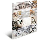 "HERMA Eckspannermappe ""Katzen"", aus Karton, DIN A3"