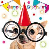 """SUSY CARD 3D Geburtstagskarte """"Funny Animals Hund mit"""
