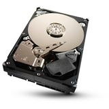 1000GB Seagate Barracuda 7200.11 ST310005N1D1AS-RK 32MB 3.5""