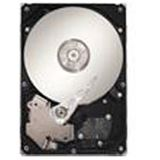 "250GB Maxtor DiamondMax 23 STM3250318AS 7200U/m 8MB 3,5"" (8,9cm) SATA II"