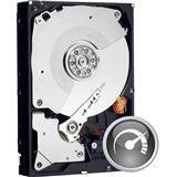"""2000GB WD Caviar Black WD2001FASS 64MB 3.5"""" (8.9cm) SATA 3Gb/s"""