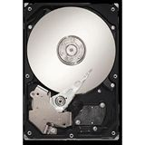 """250GB Seagate DB35 Serie ST3250310CS 8MB 3.5"""" (8.9cm) SATA 3Gb/s"""
