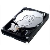 "500GB Samsung EcoGreen F3 HD503HI 16MB 3.5"" (8.9cm) SATA 3Gb/s"
