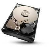 "1000GB Seagate Desktop HDD ST31000524AS 32MB 3.5"" (8.9cm) SATA"
