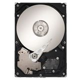 3000GB Seagate Enterprise Capacity 3.5 HDD ST33000651SS 64MB