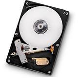 "500GB Hitachi Deskstar 7K1000.D 0F13178 32MB 3.5"" (8.9cm) SATA"