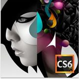 Adobe Creative Suite 6.0 Design Standard 64 Bit Deutsch Grafik