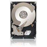 "2000GB Seagate Enterprise Value HDD / Terascale HDD ST2000NC001 64MB 3.5"" (8.9cm) SATA 6Gb/s"