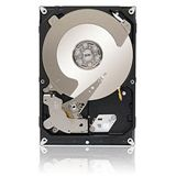 3000GB Seagate Enterprise Value HDD / Terascale HDD ST3000NC000 64MB