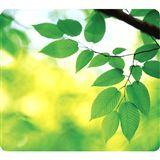 Fellowes GmbH Blätter 238 mm x 203 mm grün
