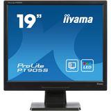 "19"" (48,26cm) iiyama ProLite P1905S-B1 schwarz 1280x1024 1xVGA /"