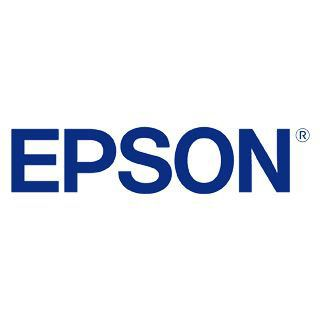 Epson Tinte 350ml light schwarz