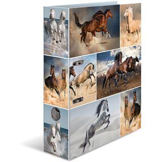 HERMA Ordner A4 Pferde