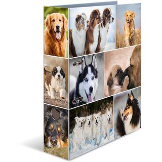HERMA Ordner A4 Hunde