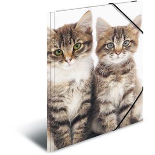 """Herma Eckspannermappe """"Katzen"""", aus PP, DIN A3"""