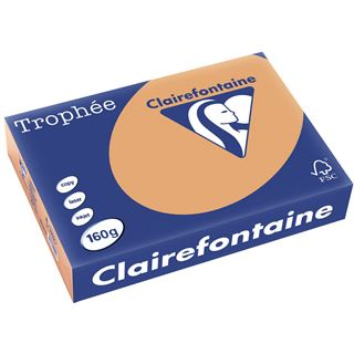 Clairalfa Multifunktionspapier Troph'e, A4, 160 g/qm, camel