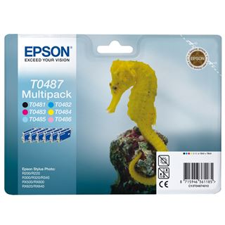 Epson Tinte C13T04874010 schwarz, cyan, magenta, gelb, cyan hell,