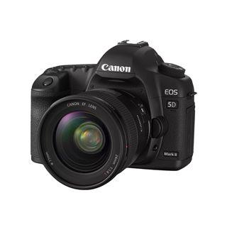 Canon EOS 5D MarkII + EF 24-70