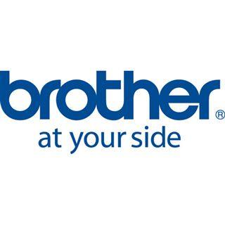 Brother QL650TD Ruban 62m x 30,48m N/Jaune