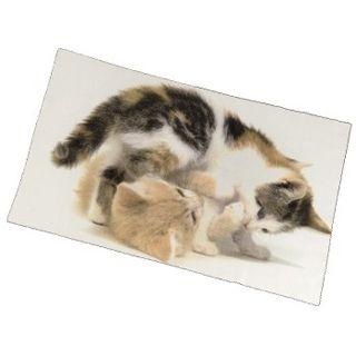 Hama Reinigungs-/Schutztuch Cats, 30,5 x 23,0 cm