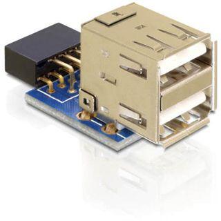 Delock 9pol USB 2.0 Adapter für 2x USB 2.0 Buchse (41825.)