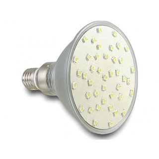 DeLock Lighting L E27 PAR38 LED 42x SMD, kaltweiß