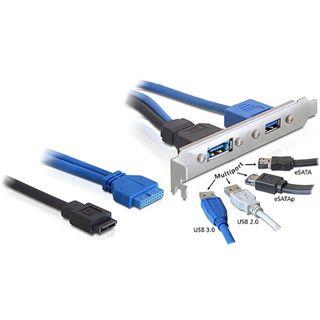 Delock USB 3.0 + eSATA Stecker Slotblech für Gehäuse (82977)