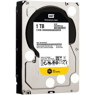 "1000GB WD RE4 WD1003FBYZ 64MB 3.5"" (8.9cm) SATA 6Gb/s"