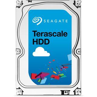 "4000GB Seagate Terascale HDD ST4000NC001 64MB 3.5"" (8.9cm) SATA"