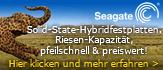 Seagate Solid State Hybridfestplatten. Riesen-Kapazität, pfeilschnell und preiswert.