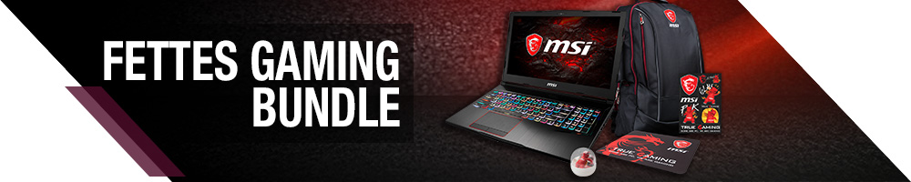 MSI FETTES GAMING BUNDLE